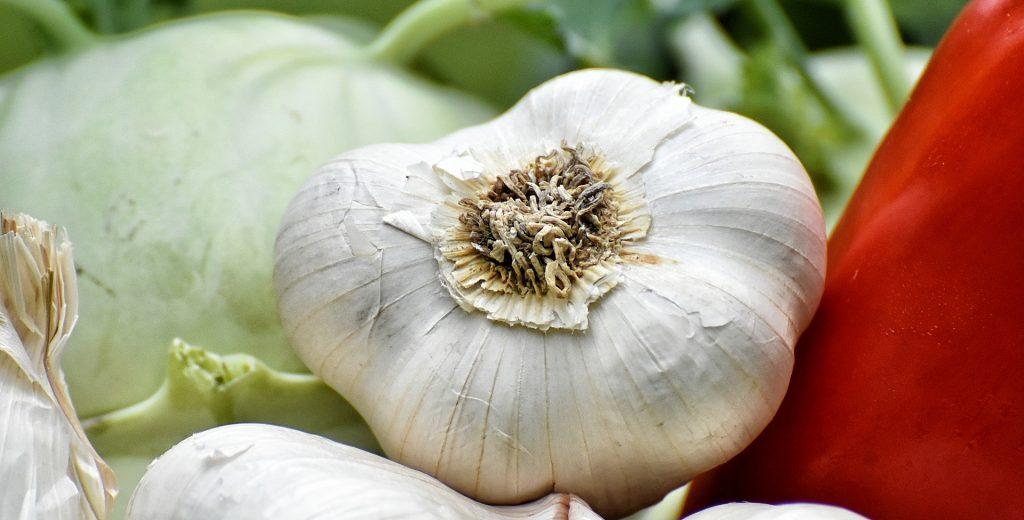 vegetables-3828546_1920